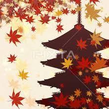 8月28日以来のご無沙汰です、猛暑日から秋の終わり・?・!