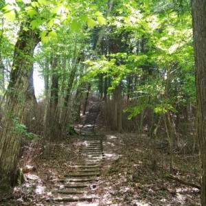 きららの森を歩いてきました