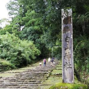 コロナ禍の旅行 2日目その2 平泉寺白山神社
