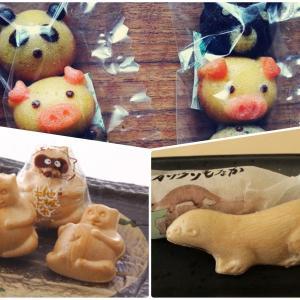 【見た目が可愛い‼︎ 】おススメのお土産(スイーツ・お菓子) 〜 愛媛編 〜