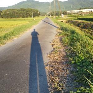 久しぶりのランニングと服の雑菌臭の対策
