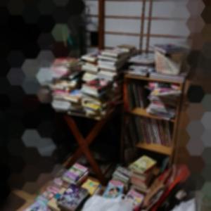 連休で本の整理とハンガーラックの解体をなんやかんやしました