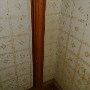 現状報告。2階の使わずのトイレをちょっとずつ掃除しています。
