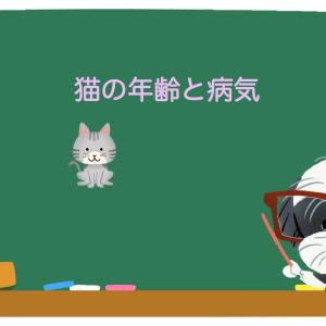 猫の年齢と病気