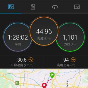 トレーニング日誌2019-7