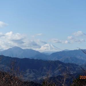 高尾山に行く