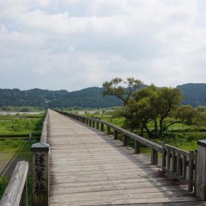 ギネスブック認定の世界一長い木造歩道橋渡ってみた😆