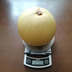 高級果物【ざぼん】1250g!皮の加工商品って色々あります^^