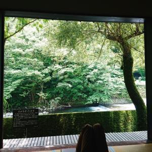 箱根チョイ旅②山からのパワーをいただきます『天山湯治郷』