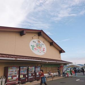 横須賀お買い物ツアーその①地元野菜からスイーツまで横須賀の台所『すかなごっそ』