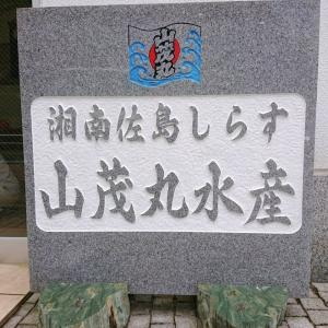 横須賀お買い物ツアーその③湘南佐島しらす『山茂丸水産』しらすはここで買え!