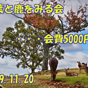 「紅葉と鹿を見る会」・・・会費5000円!