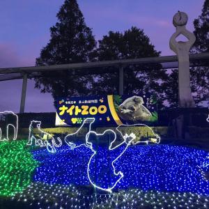 愛知県の東山動物園ナイトズーに行ってきた!アクセスや見どころを徹底解説!