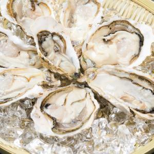 牡蠣は栄養たっぷりだけど食べ過ぎには要注意!牡蠣にあたった時の症状まとめ
