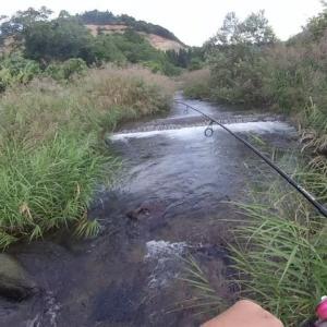 ルアーで渓流リベンジ!果たして釣果は?