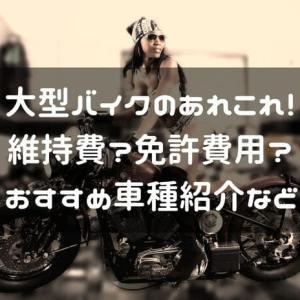 大型バイクのあれこれ!維持費や免許費用、おすすめを解説紹介します