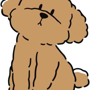 何か変?犬の肥満細胞腫に気づいた!