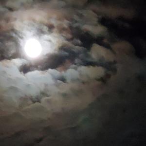 9月21日一粒万倍日 中秋の名月満月
