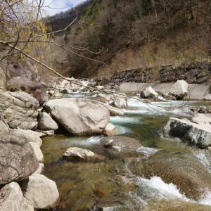 地元で渓流釣り