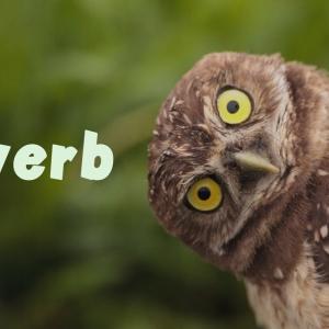 小学生でもわかる「副詞」②:副詞は「おまけことば」