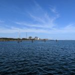 夕方が熱い10月上旬の鹿島港魚釣園!