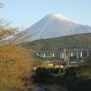 初冠雪の富士山が美しい!
