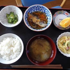 今日のランチは鱈の焼き魚の野菜あんかけ、マカロニサラダ