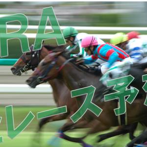 JRA 2020/12/05(土)( 中山 阪神 中京 )予想&結果  ※無料公開  (※的中実績を最後に追記)