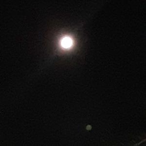 満月(ハッピーハロウィン)