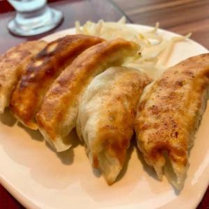 【浜松餃子 錦華】サクッと美味しい手包み浜松餃子!駅から徒歩1分!
