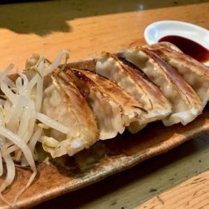 【民民 浜松有楽街店】ごはん食べ放題でお腹いっぱい!駅近のコスパ浜松餃子!