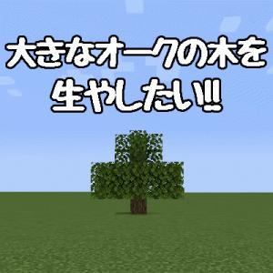 大きなオークの木の生やしかた