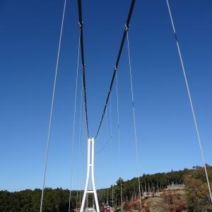 三島スカイウォークを歩く!ロングジップスライドを眺めながら(三島市)