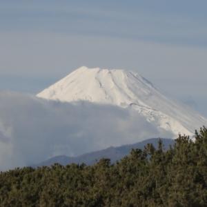 雨上がり富士山は真っ白☆