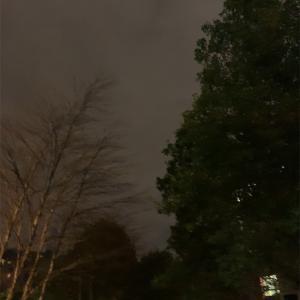 外は暗いが