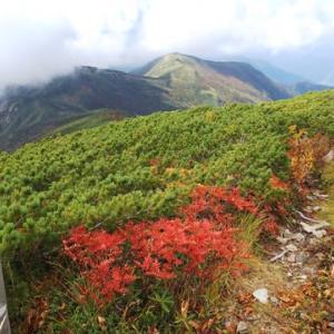 白山紅葉最前線  加賀禅定道上部