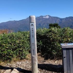 紅葉情報 白山国立公園南西部 加越国境の山々