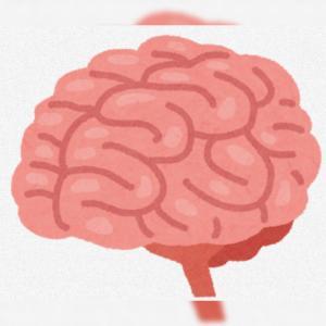 脳内のつぶやき(今日の書き込みはほんとにグズグズです)