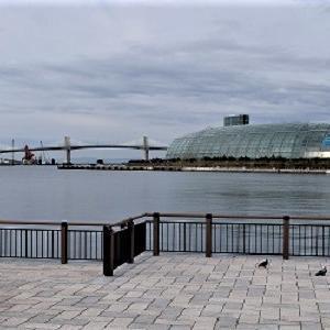 ひさしぶりに港を歩いてみました そしてひさしぶりにSWITCH