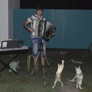 夜の舞踏会