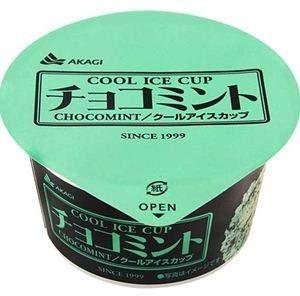 よく食べるチョコミントアイス