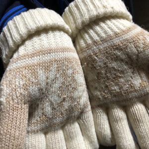 手袋にまつわる遺伝子情報