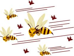 ハチに刺された時の対処法とは 正しい応急処置の方法と手順