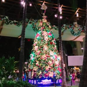 ハワイ語でメリークリスマスは?