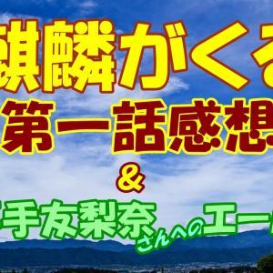 『 麒麟がくる 』第一話感想【エンタメ】欅坂46平手友梨奈さん脱退