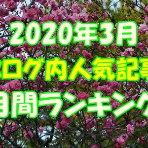 【ブログ内人気記事】3月の月間ランキング!意外な結果に?