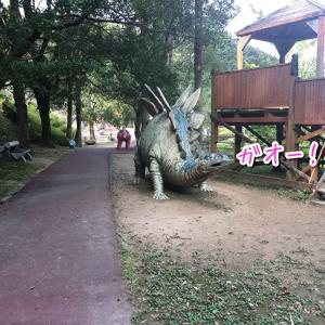 森でし〇ゆき姫軍団に出会いました。ハイホー!