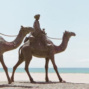 """【千葉・御宿(おんじゅく)】 気分はアフリカの""""サハラ砂漠""""♪ 首都圏から日帰りで行ける""""千葉の砂漠""""へ行ってみよう♪"""