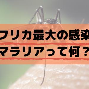 アフリカ最大の感染症マラリアって何?