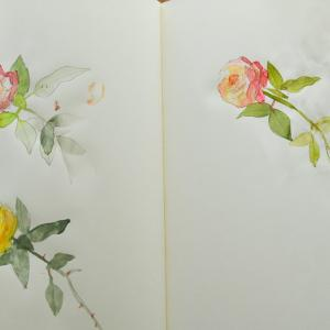 花の絵を描く2Wチャレンジ DAY2